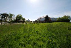 Ayr, Annfield Cottage, Belston Holdings, KA6 5JW